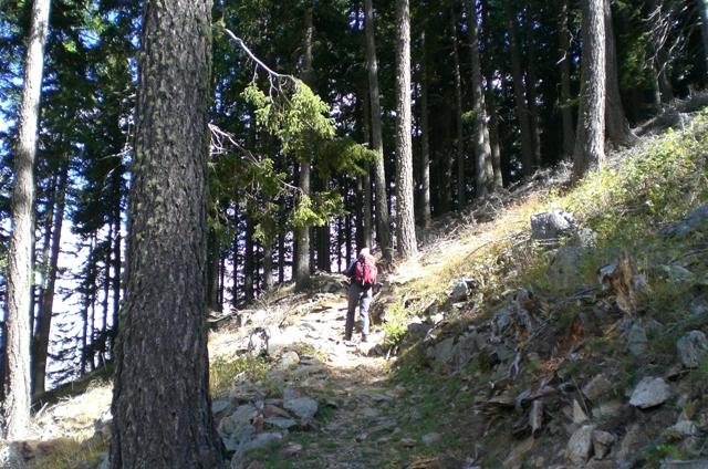 Naturnser Hochwart 2.608m im Vinschgau - Berge-Hochtouren.de