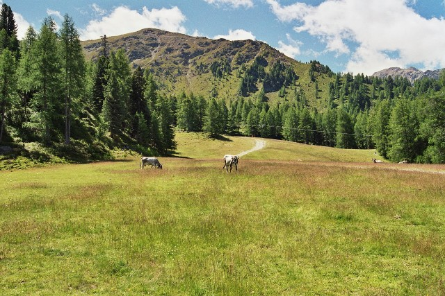 Hoher Dieb 2.730 m - Berge-Hochtouren.de
