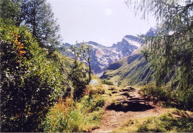 Hochfeiler - Berge-Hochtouren.de